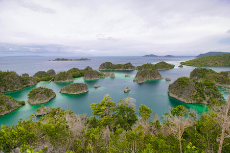landscape from a viewpoint in piaynemo island, raja ampat archipelago