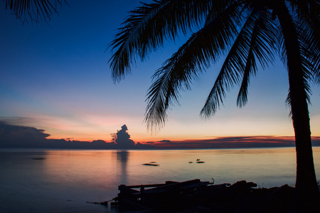 silhouettes of palm in exotic seascape and sunset, maratua island 写真素材