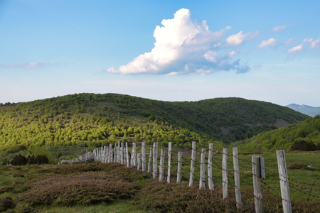 wooden fence with barbed wire on emilia romagna hills, Italy