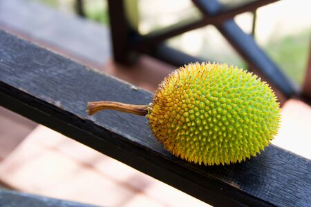 close up of large jackfruit on a black wooden board