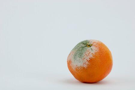 rotten green on moldy orange isolated on white background