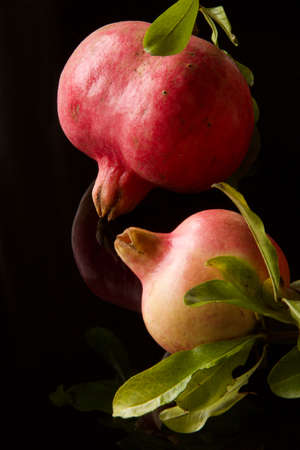 two pink pomegranates isolated on black reflected background
