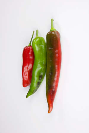 three colored peppers vertical isolated on white background