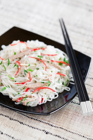 Shirataki noedels met rundvlees, chili, gember, knoflook en peterselie. Selectieve aandacht