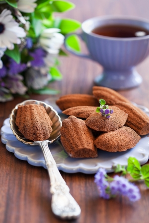 madeleine: Chocolate madeleine cookies with lavender and lemon, selective focus