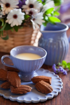 Chocolate madeleine cookies with lavender and lemon, selective focus photo