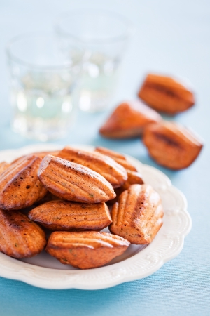 madeleine: Cheese oat bran madeleines cookies with paprika. Selective focus Stock Photo
