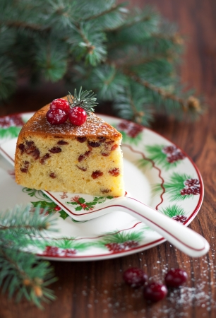 Cake with dried cranberries, selective focus Stock Photo - 16295576