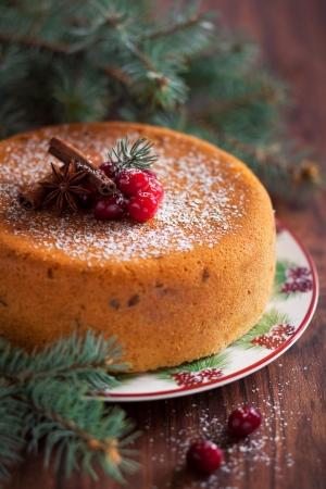 Cake with dried cranberries, selective focus Stock Photo - 16295579