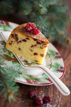 Cake with dried cranberries, selective focus Stock Photo - 16436687