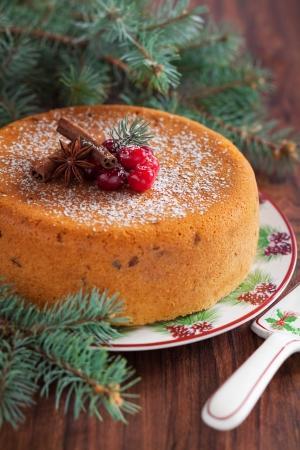 Cake with dried cranberries, selective focus Stock Photo - 16918643
