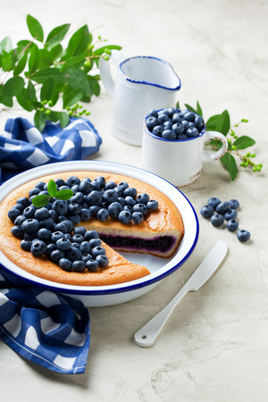 Blueberry pie in enamel baking dish and fresh blueberries on concrete background, selective focus Stock Photo