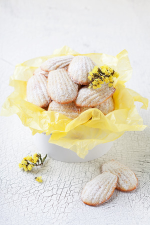 Homemade Lemon cookies (Madeleine) in gift box, selective focus Stock Photo