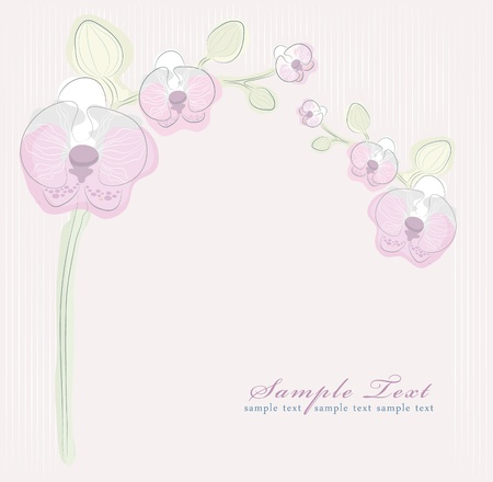Floral pink orchid background Vector