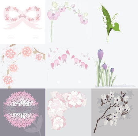 Set of various floral background greeting or birthday cards and invitations with orchids, lilly of the valley, peonies, crocus, cherry blossom, spring and summer flowers. Illustration