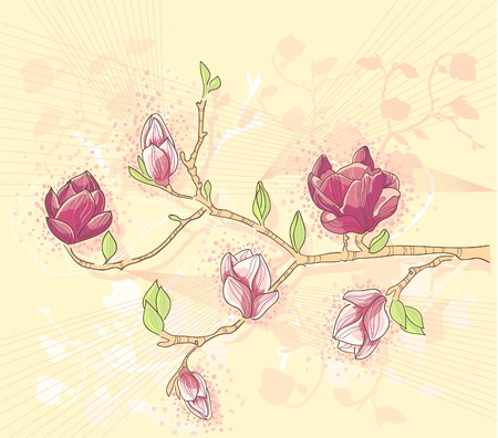 Abstract romantic flower vector background with magnolia branch Vector