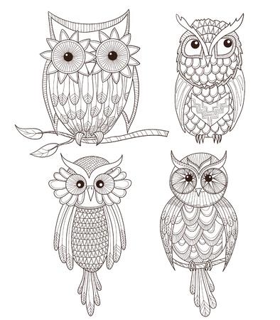 owlet: Conjunto de los b�hos lindos