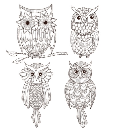 owl cartoon: Set of cute owls