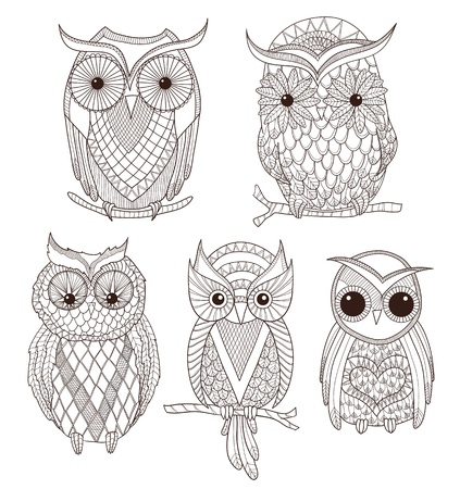 owl on branch: Set of cute owls