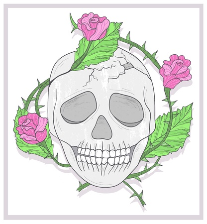 Skull and roses illustration Vector
