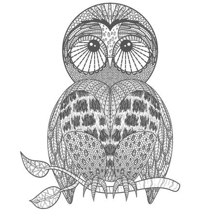 indie: Cute owl on tree branch