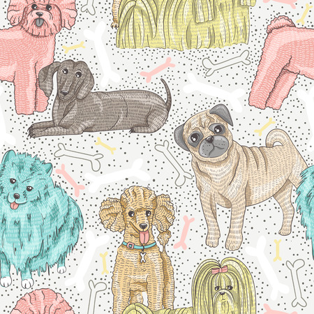 spitz: cute seamless vector pattern with little breed dogs  Bichon, pug, spitz, dachshund, poodle, shih tzu