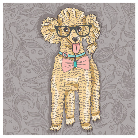 bowtie: Hipster poodle with glasses and bowtie