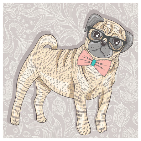 Hipster pug with glasses and bowtie  Cute puppy  Illustration
