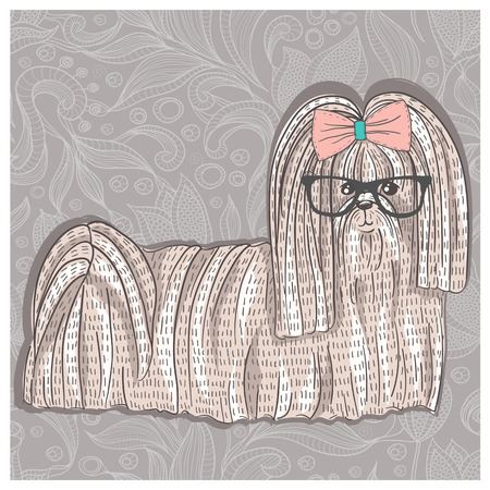 shih: Hipster shih tzu with glasses and bowtie  Cute puppy