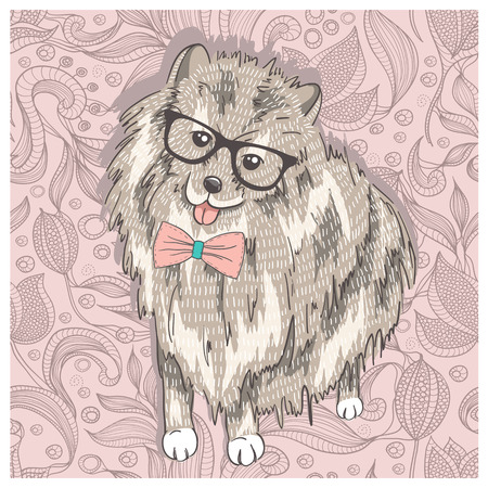 spitz: Hipster spitz with glasses and bowtie  Cute puppy