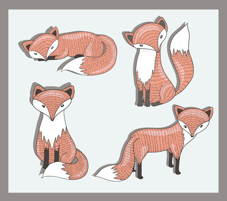 fox: Vector set of cute little fox. Adorable forest animals.