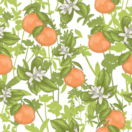 orange fruit: Seamless summer floral pattern. Vector background with flowers and tangerines. Illustration