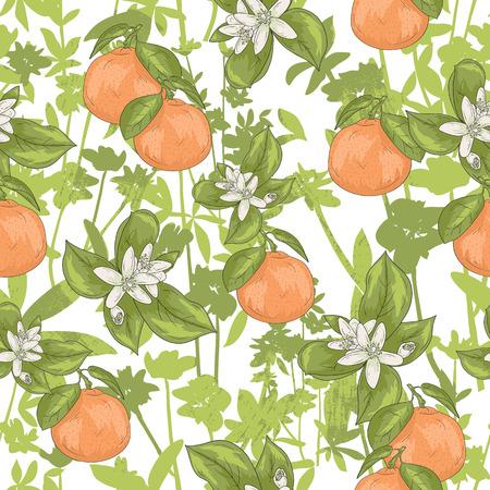 fruit orange: verano sin fisuras patrón floral. Vector de fondo con flores y mandarinas. Vectores