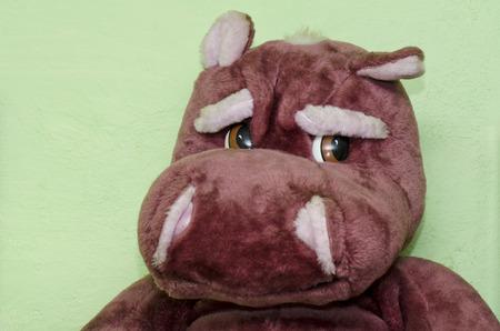 plush: hippo plush big