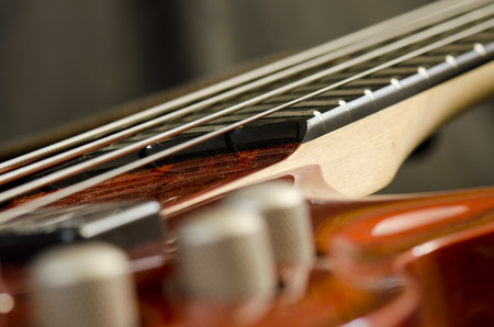 fingerboard: bass guitar control
