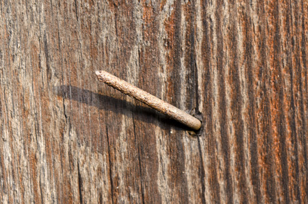 sticking to: nail sticking out of wood Stock Photo
