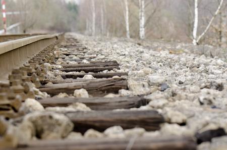 frets: rail and birch