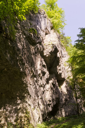 perpendicular: perpendicular cliff with trees