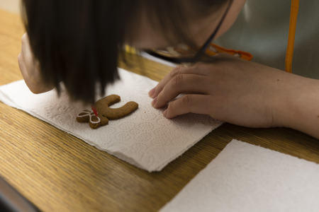 decorating: hand decorating gingerbread Stock Photo
