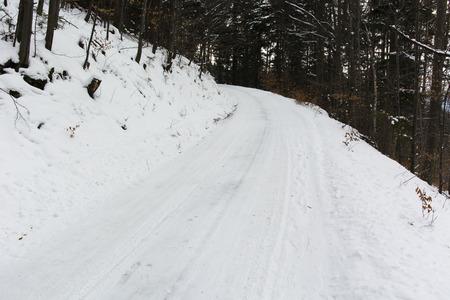 amputation: snowy path through the woods
