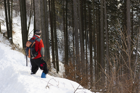 urinating: urinating hiker in the snow on a slope in a forest in the mountains