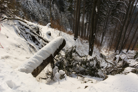 runoff: outlet pipe covered with snow and the steep slope Into the Woods