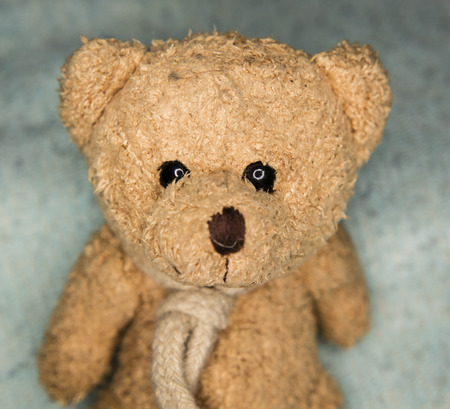 gleam: small teddy bear with Ocher colors Gleam in His eyes