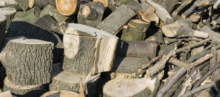 pile of logs: pile of logs ready for chopping