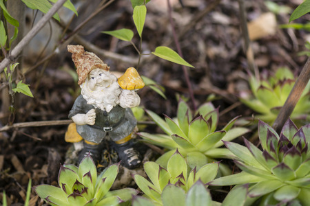 dwarves: ceramic dwarf with mushroom in hand with rock gardens