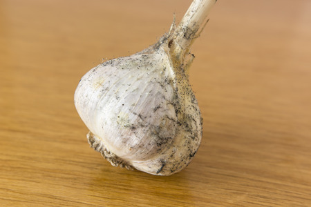 particulates: Garlic with mold parts to Each Other.