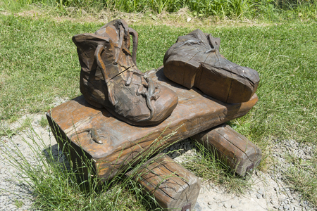 carved: Carved shoe with lizards.