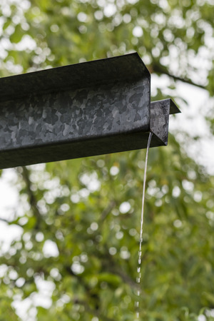 trickle: Trickle of rainwater flowing from the eaves.