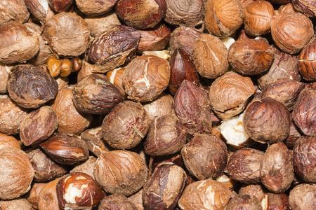 shelled: Shelled hazelnuts.