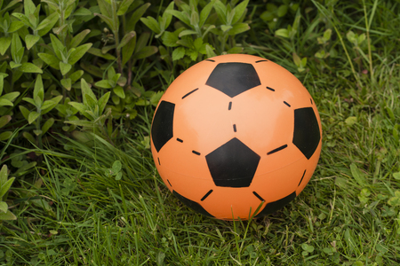 coping: Orange coping ball lying on the grass.